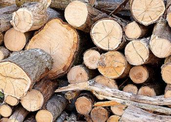 timber-farmer
